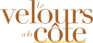 logo conseil mode velours image